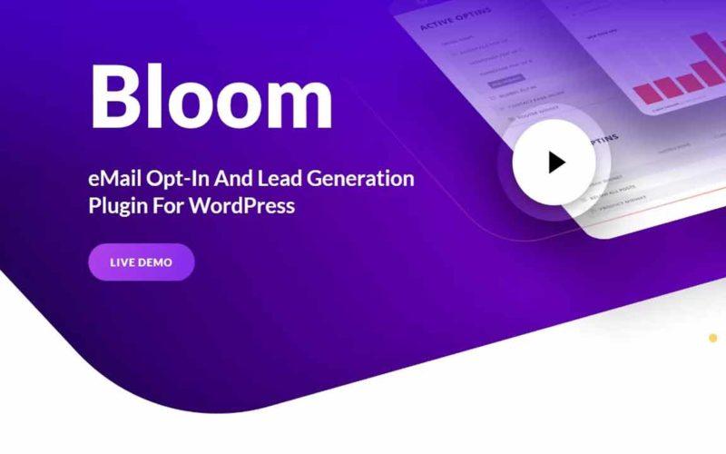 Connecteur Bloom et Newsletter